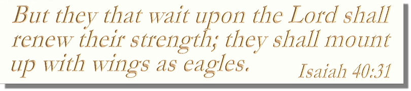But they that wait upon the Lord shall renew their strength; they shall mount up with wings as eagles.  Isaiah 40:31